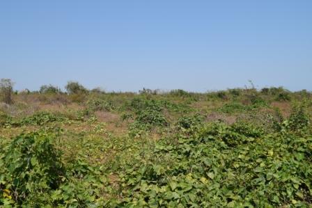 Casalote en Malambo, MALAMBO 85034, foto 8