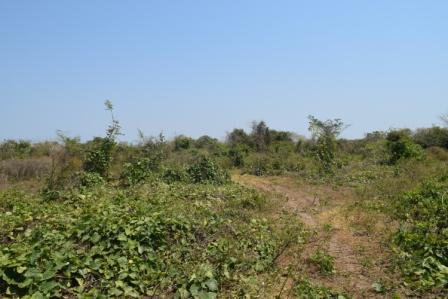 Casalote en Malambo, MALAMBO 85035, foto 9