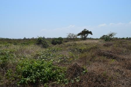 Casalote en Malambo, MALAMBO 85035, foto 10