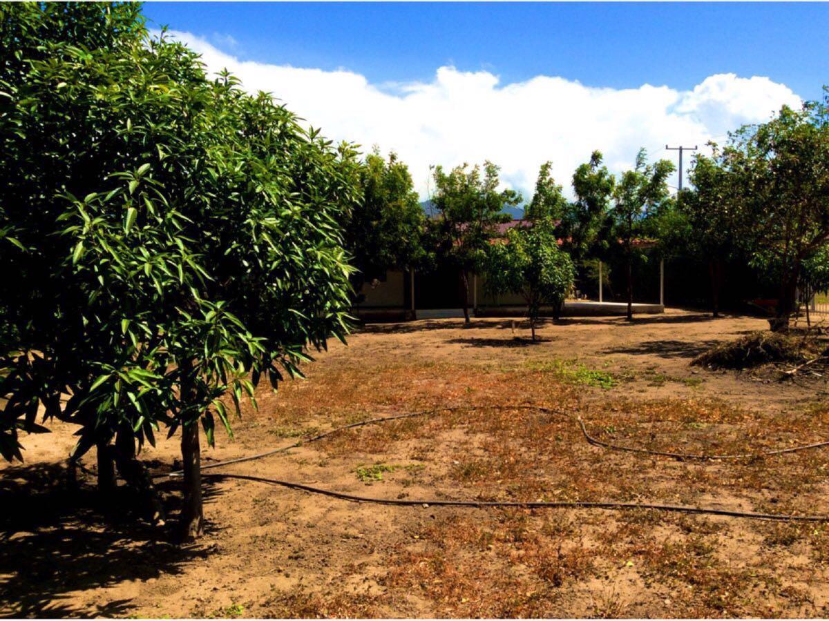 Casa en  Bonda, SANTA MARTA 86538, foto 3