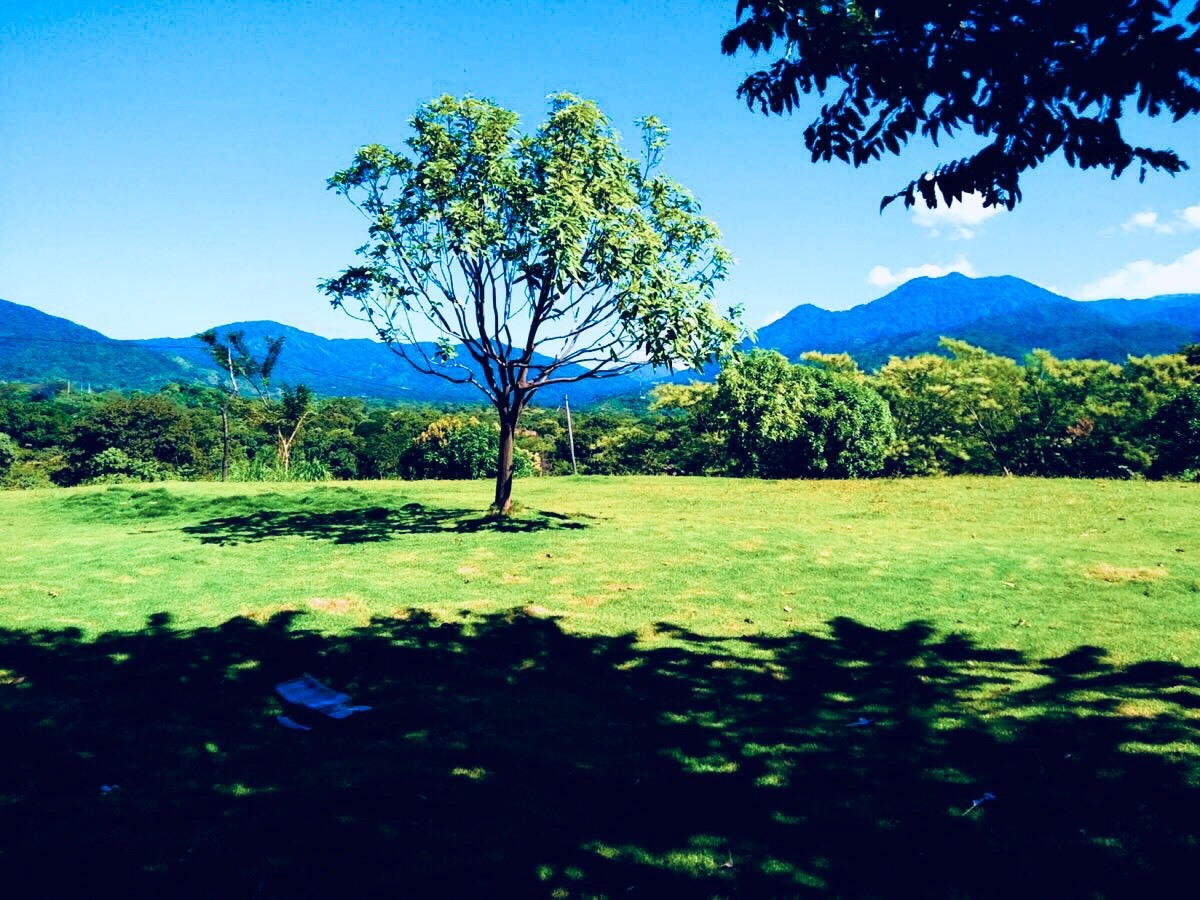 Casalote en  Bonda, SANTA MARTA 86539, foto 19