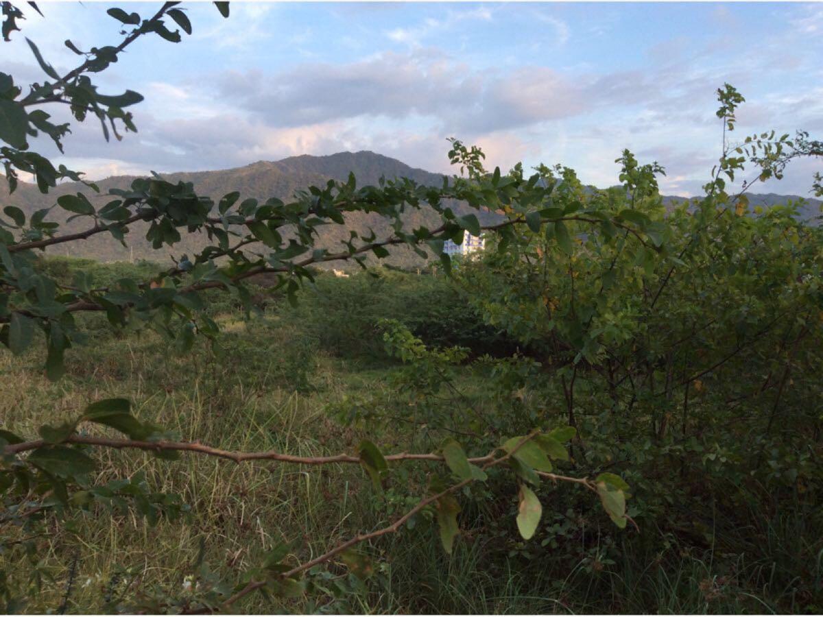 Casalote en  Irotama, SANTA MARTA 88840, foto 5