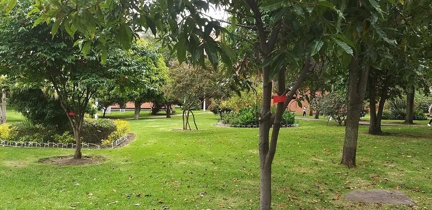 Apartamento en Bogota D.c. 1754, foto 20