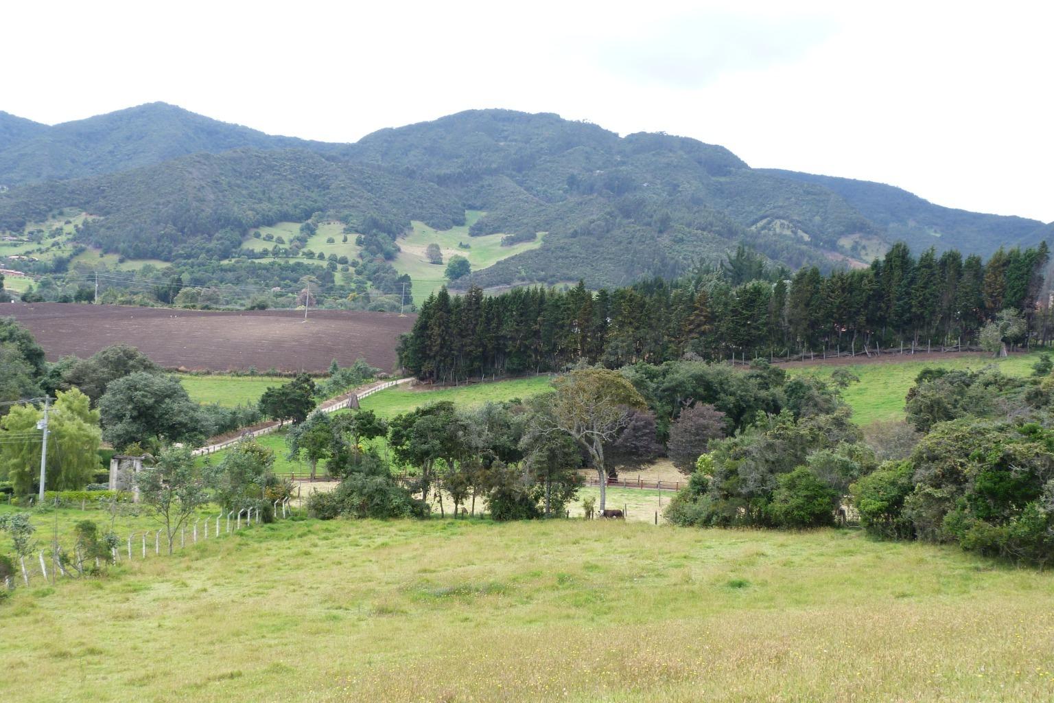 Casa en Subachoque 8404, foto 23