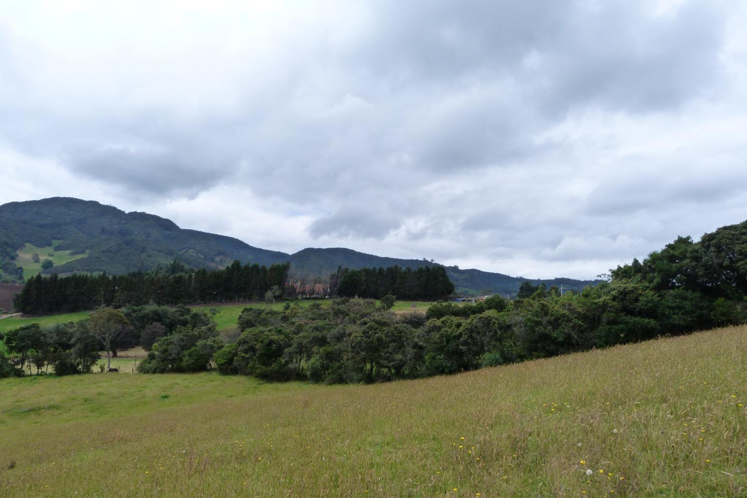 Casa en Subachoque 8404, foto 24