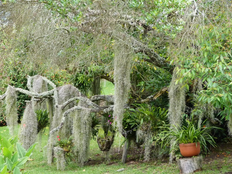 Casa en Subachoque 8404, foto 31