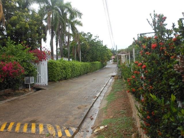 Casa en Carmen de Apicala, CARMEN DE APICALA 64075, foto 3