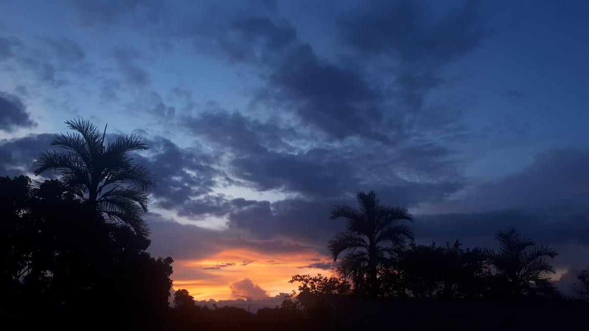 Finca en Las Veraneras, PIENDAMO 90976, foto 3