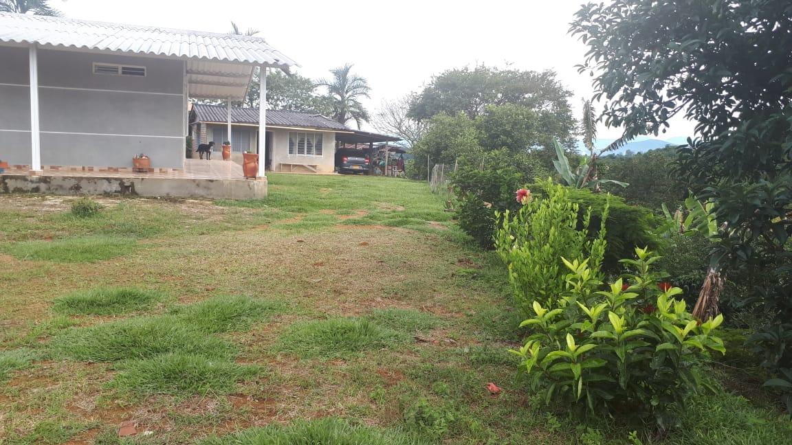 Finca en Las Veraneras, PIENDAMO 90976, foto 8