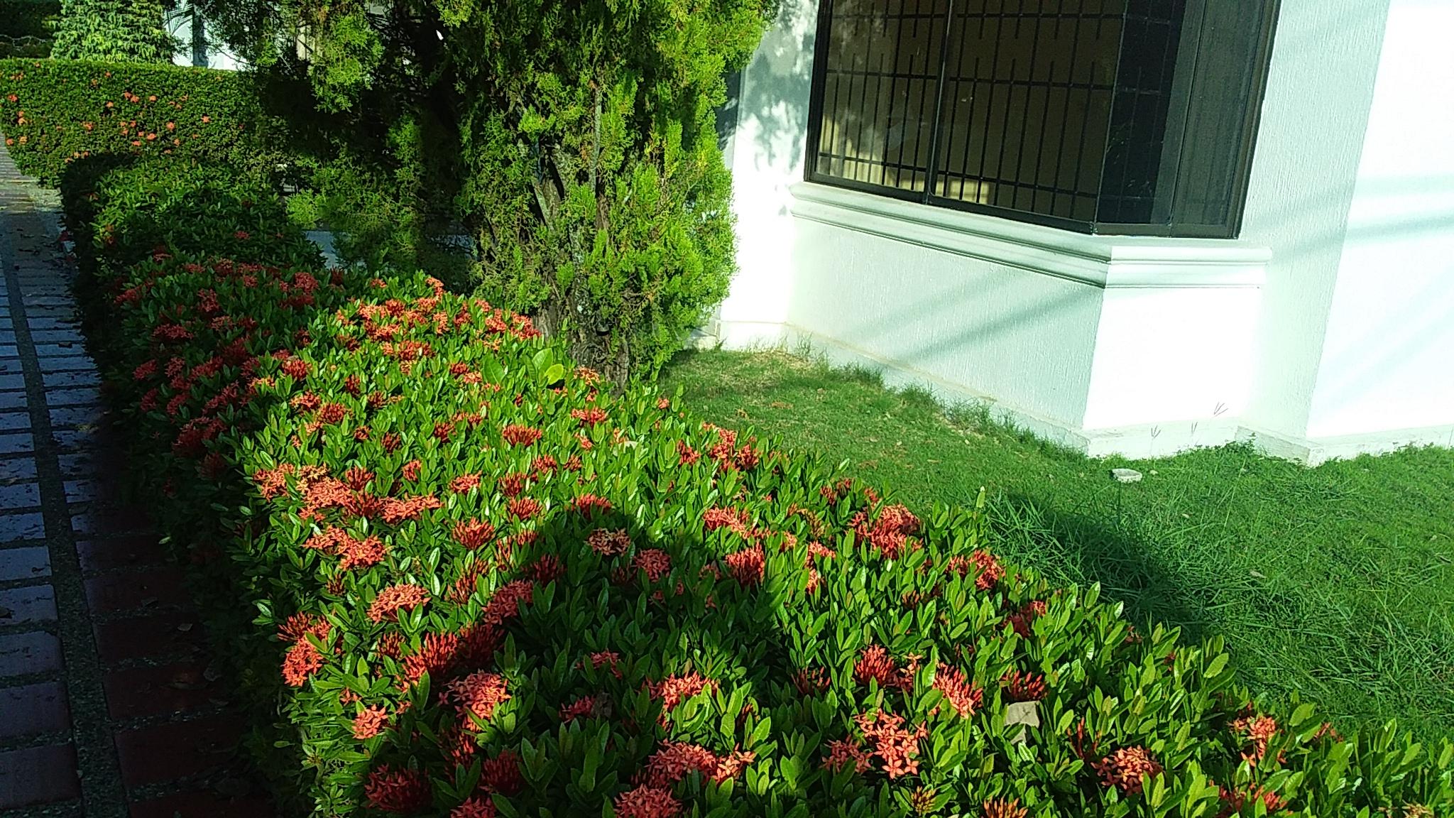 Casa en Monteria 10123, foto 1