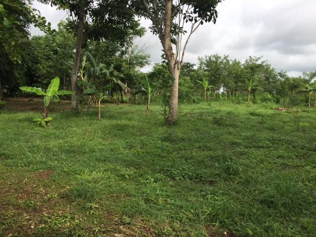 Casalote en  Santa Lucia, MONTERIA 71292, foto 3