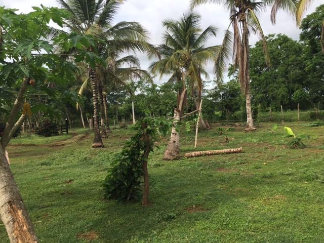 Casalote en  Santa Lucia, MONTERIA 71292, foto 5