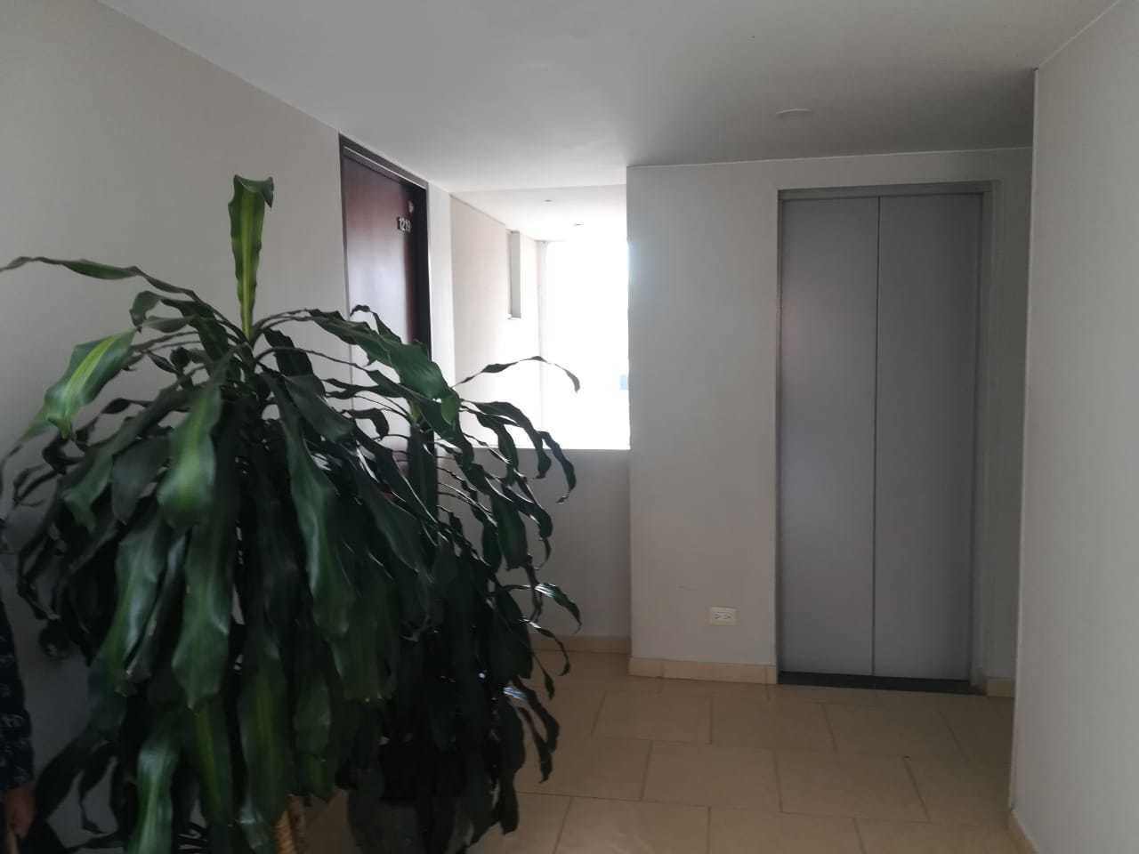 Apartamento en Urbanizacion Los Laureles 7647, foto 5