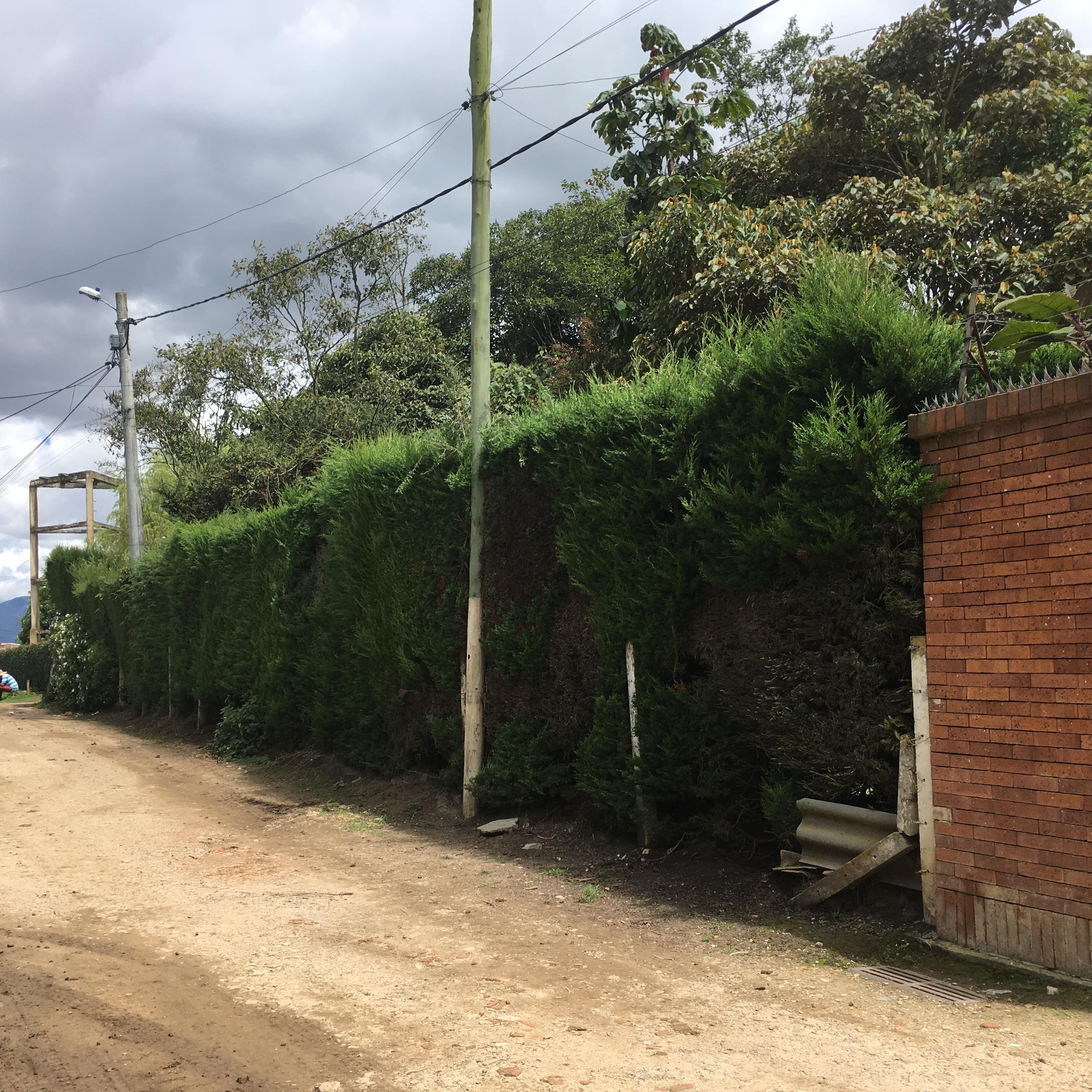 Casa en Parcelas, COTA 2420, foto 19