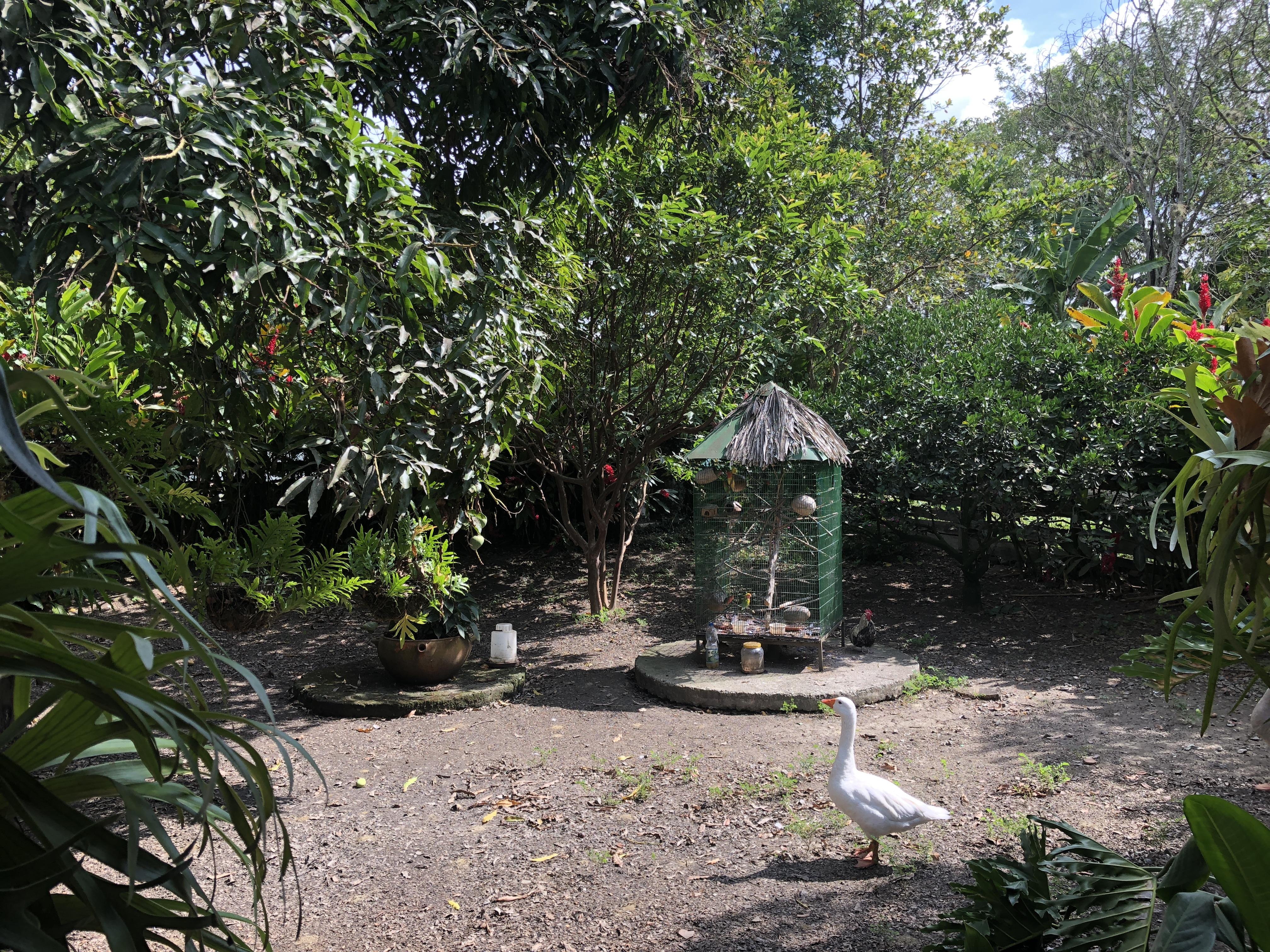 Casalote en Corregimiento de Rozo, PALMIRA 2779, foto 5