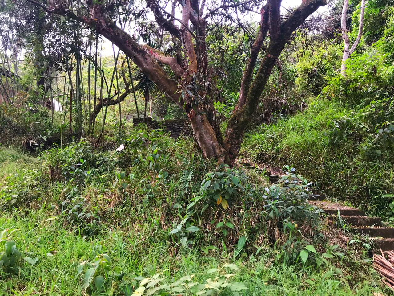 Casalote en  La Buitrera, CALI 89847, foto 3