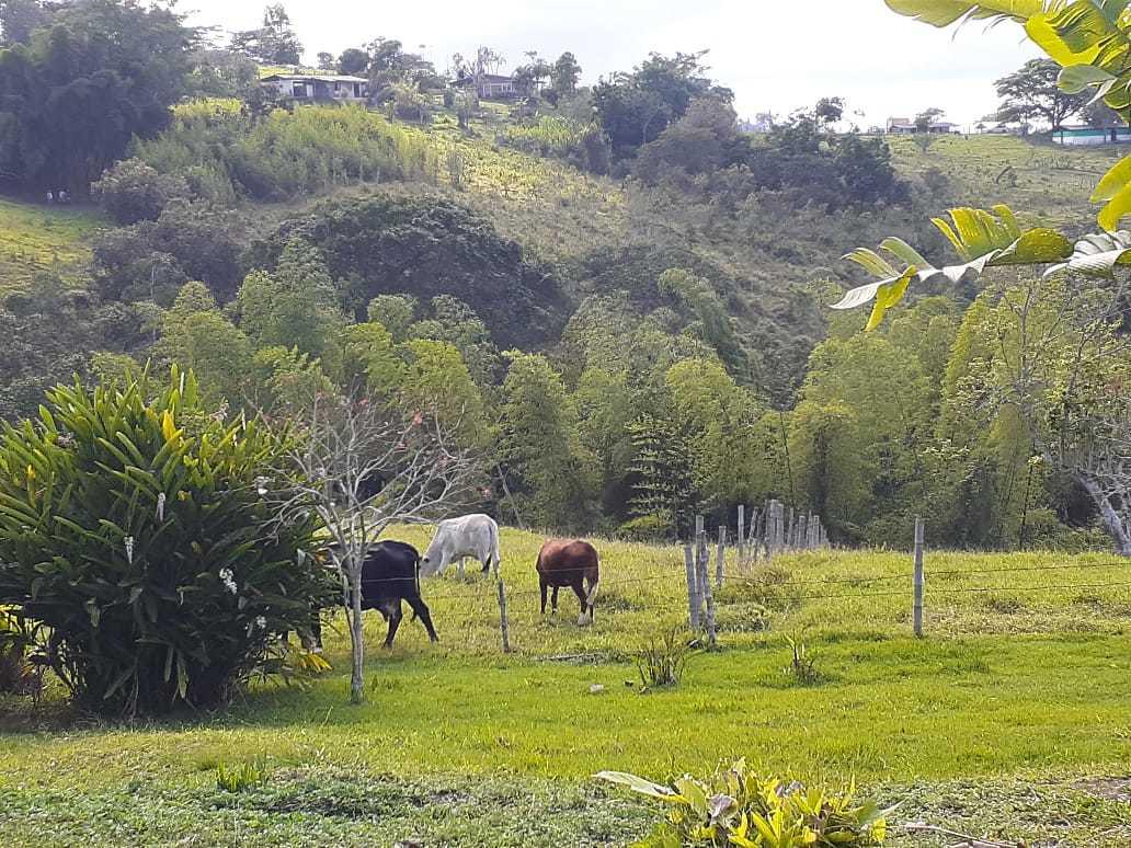 Casalote en La Cumbre 450, foto 8