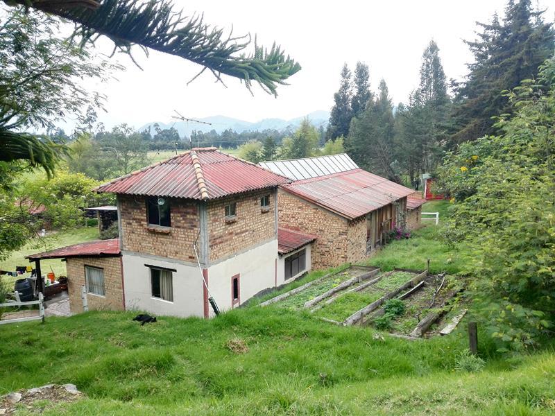 Casa en La Pena, CUCUNUBA 86644, foto 18