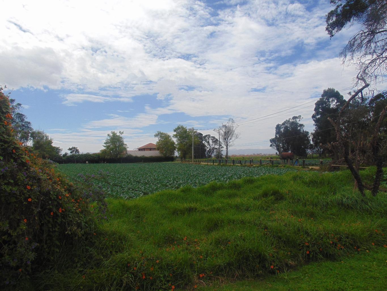 Casalote en Funza, FUNZA 91381, foto 12