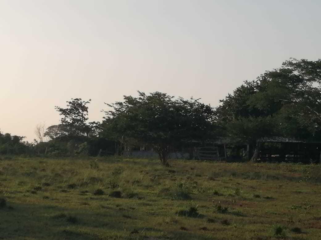 Casalote en Arjona, CARTAGENA DE INDIAS 91119, foto 13