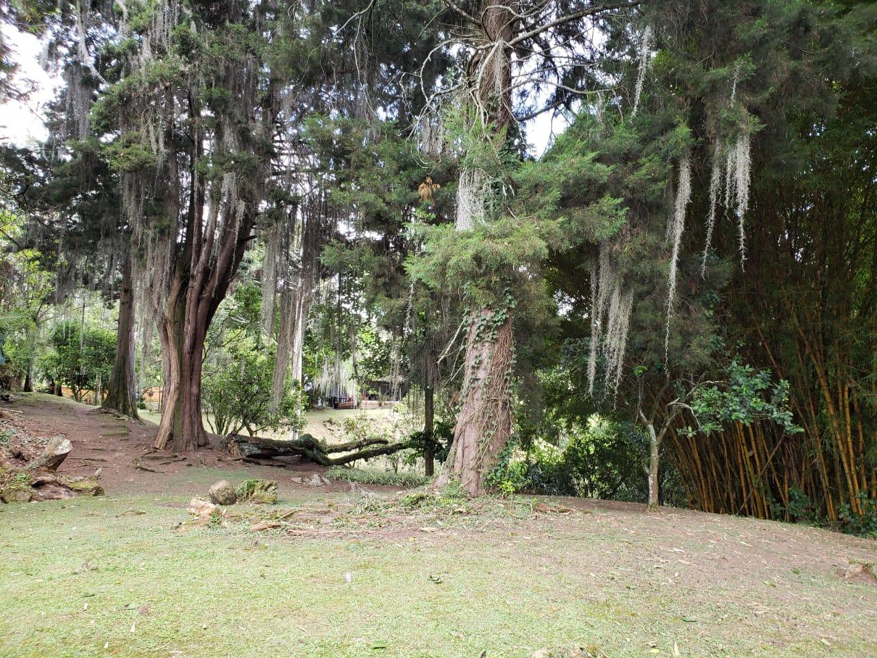 Casa en El Escobero, ENVIGADO 2209, foto 15