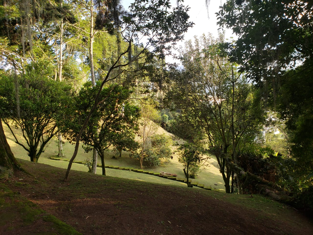 Casa en El Escobero, ENVIGADO 2209, foto 19