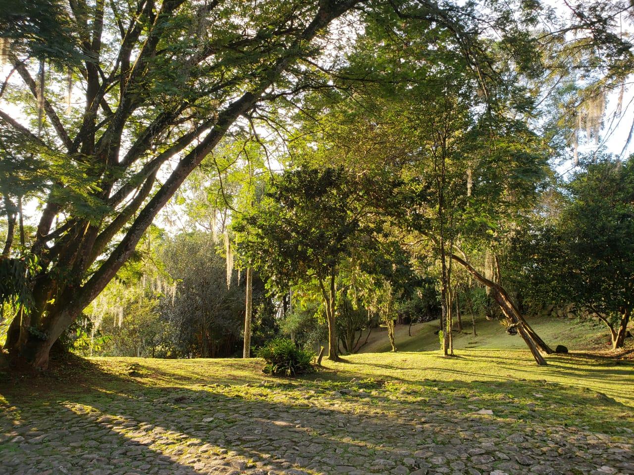 Casa en El Escobero, ENVIGADO 2209, foto 22