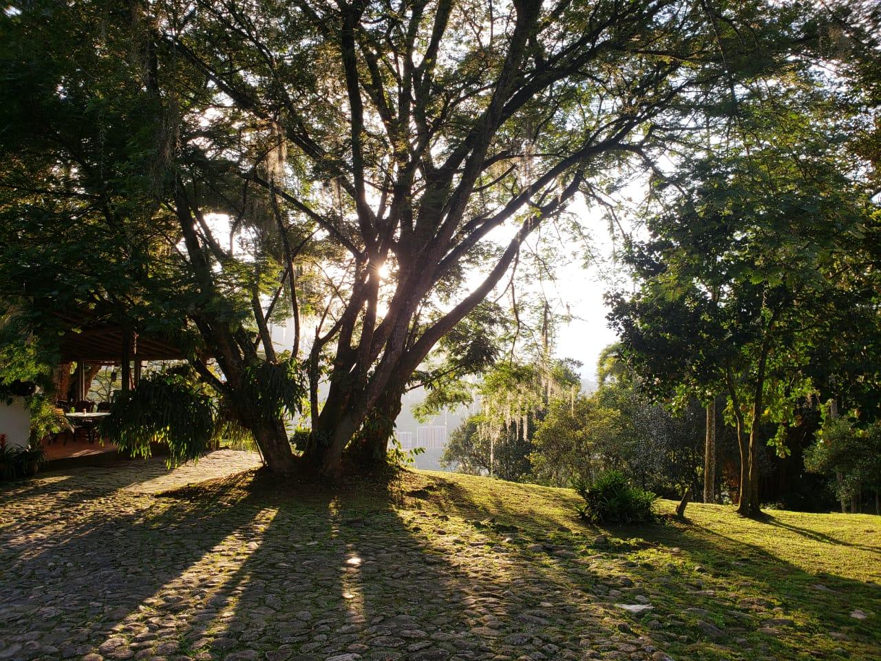Casa en El Escobero, ENVIGADO 2209, foto 6