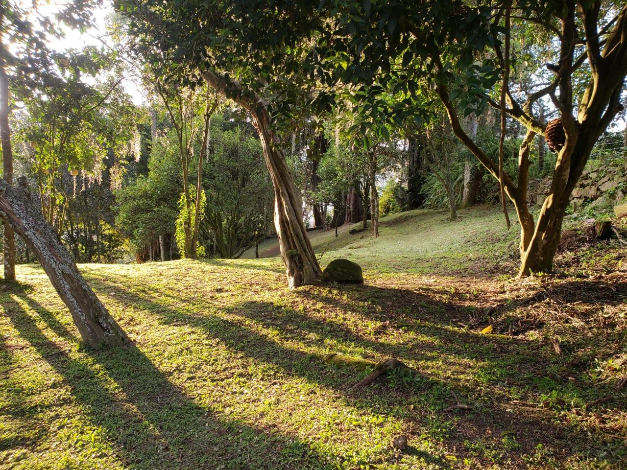 Casa en El Escobero, ENVIGADO 2209, foto 24