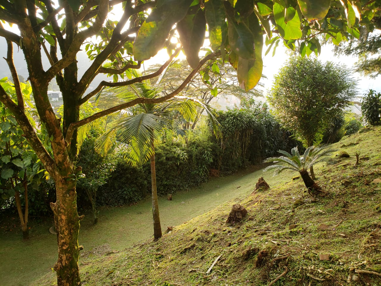 Casa en El Escobero, ENVIGADO 2209, foto 27