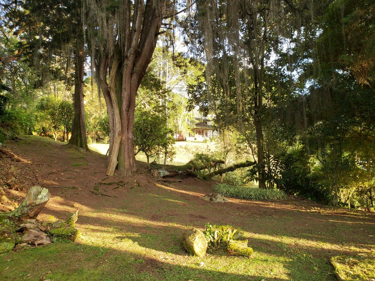 Casa en El Escobero, ENVIGADO 2209, foto 29