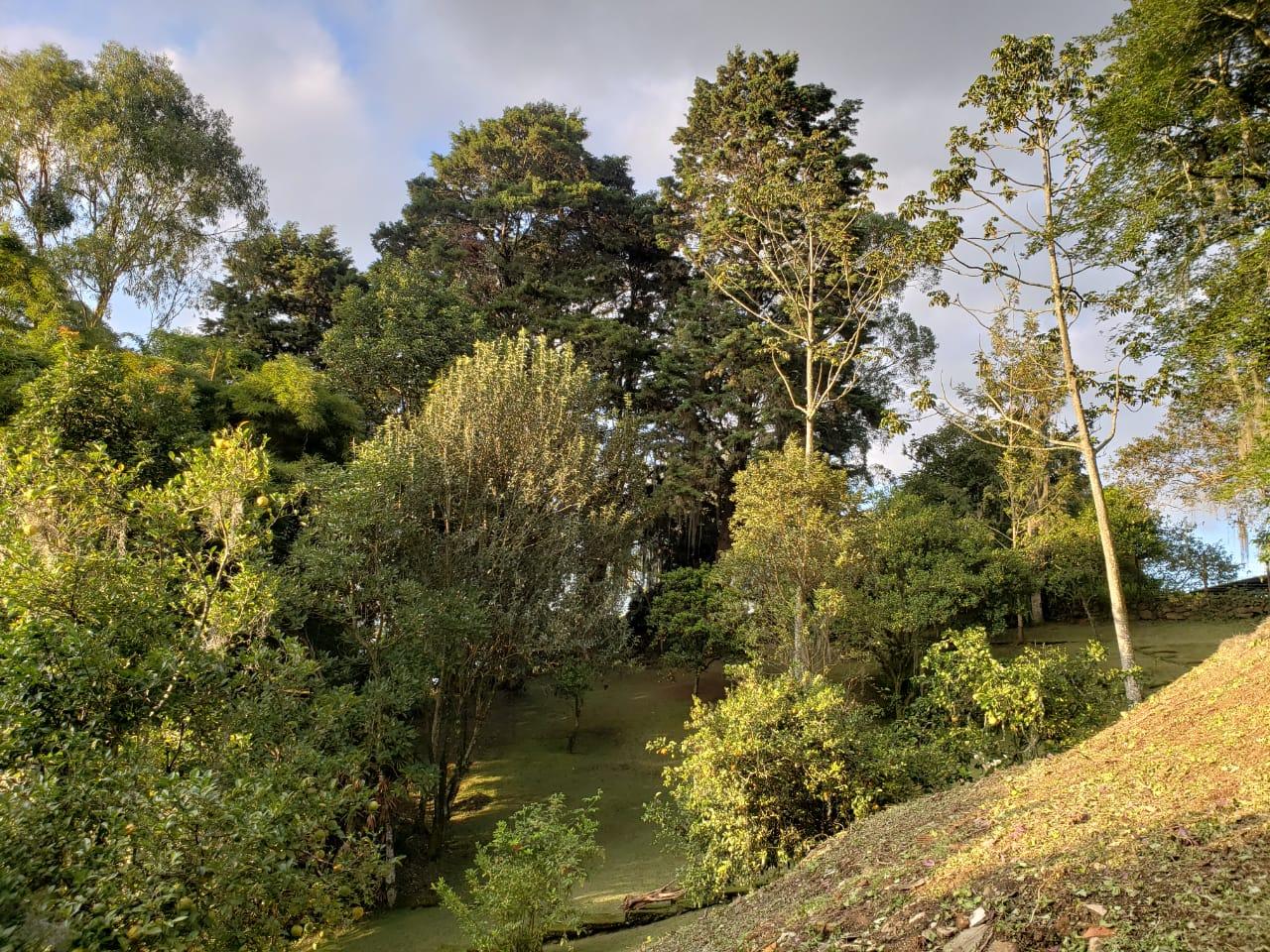 Casa en El Escobero, ENVIGADO 2209, foto 21