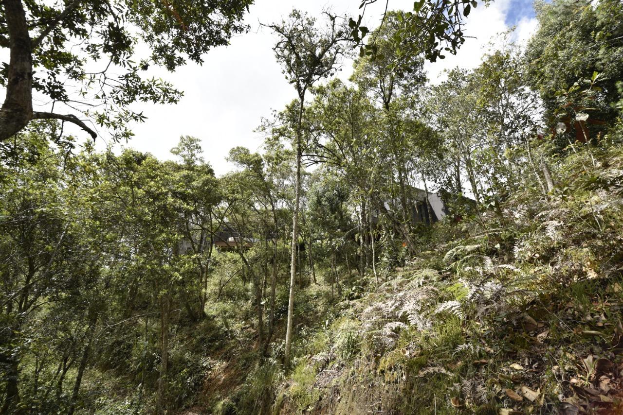 Casa en El Escobero, ENVIGADO 2214, foto 53