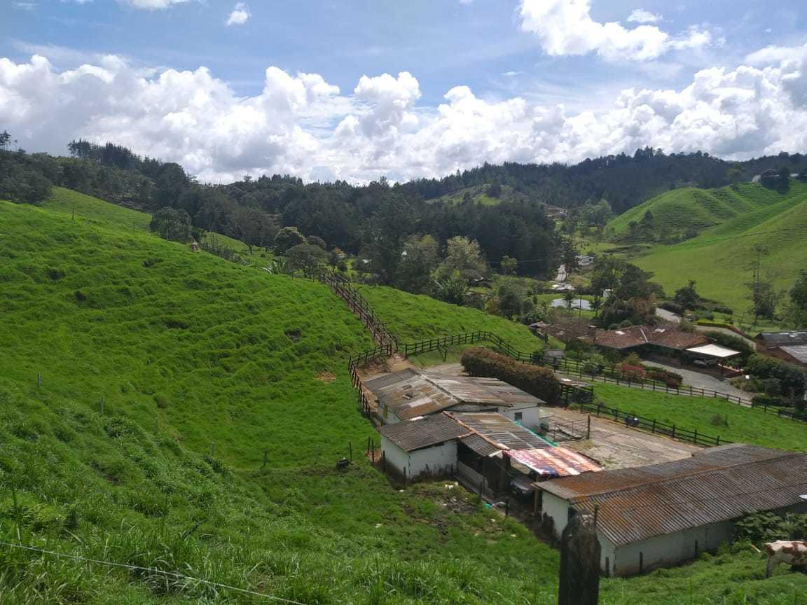 Lote en Medellin 11232, foto 4