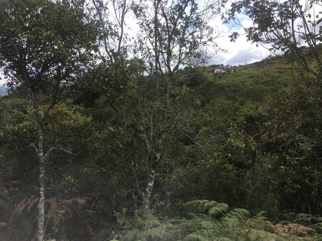 Lote en Medellin 23368, foto 4