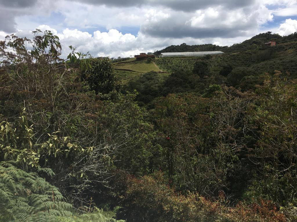 Lote en Medellin 23368, foto 5