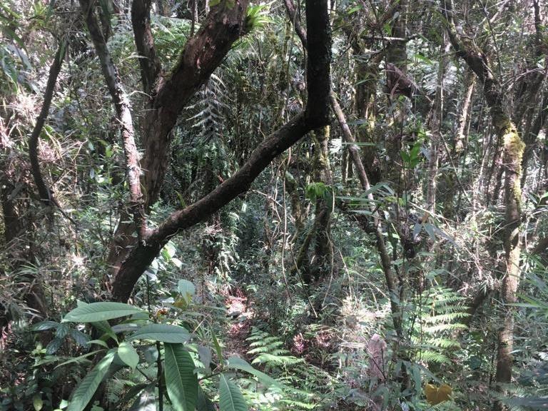 Lote en Medellin 23368, foto 8