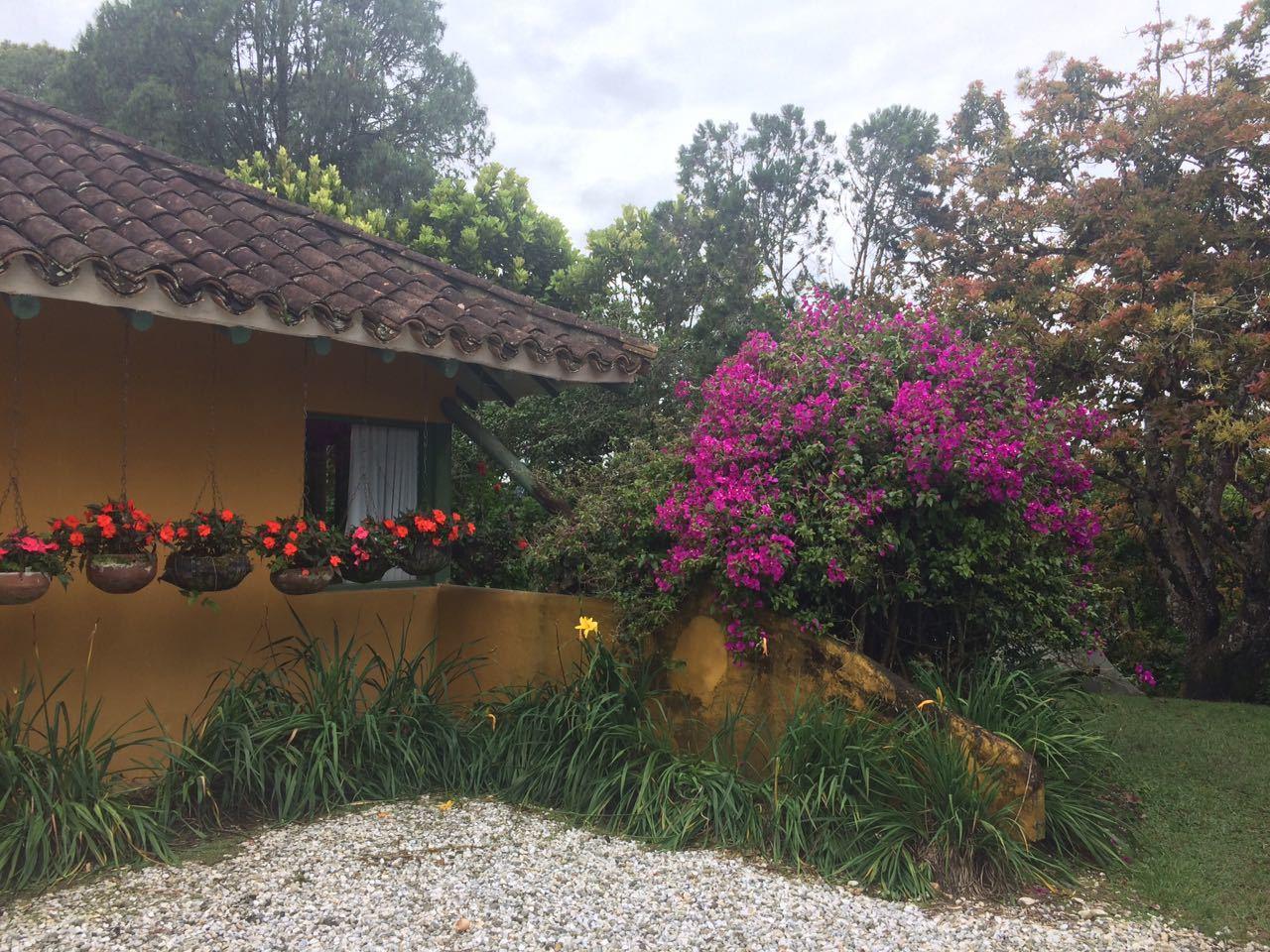 Casa en La Ceja, LA CEJA 90080, foto 5