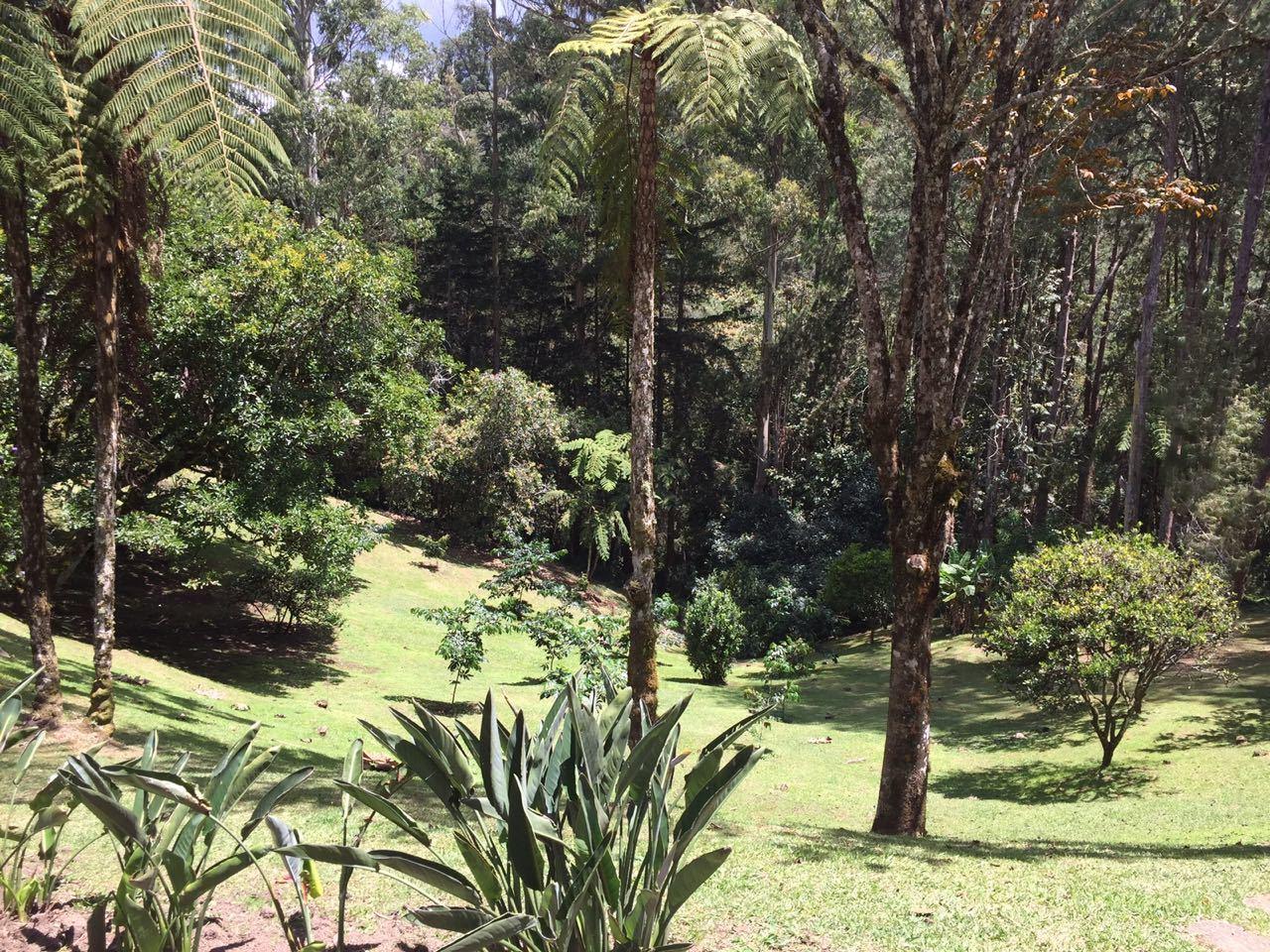 Casa en Rionegro, RIONEGRO 91273, foto 7