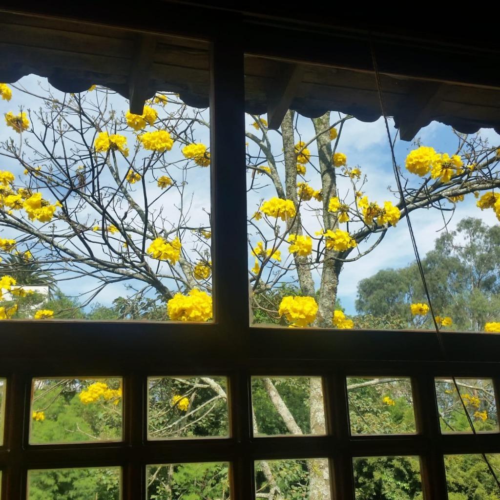 Casa en  El Poblado, MEDELLIN 91828, foto 4