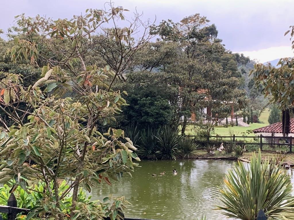 Casa en Medellin 437, foto 43