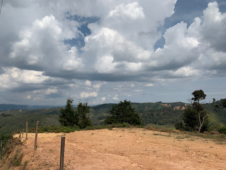 97389 - Venta Lote vía Santa Helena con vista a bosque protegido