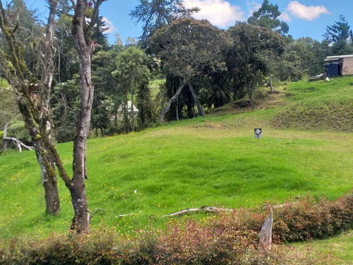 Lote en Medellin 10335, foto 3